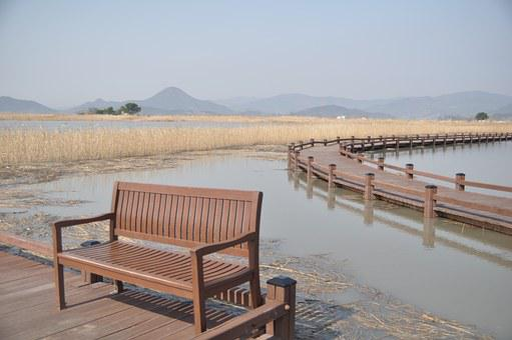 Suncheonman Bay, Chair, Water