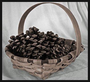 Still Life, Pineapples, Basket, Brown, Wicker