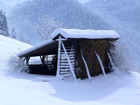 Winter, White, Hayrack, Snow, December