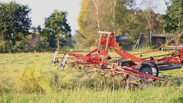 Windrower, Machine, Agriculture, Device, Work