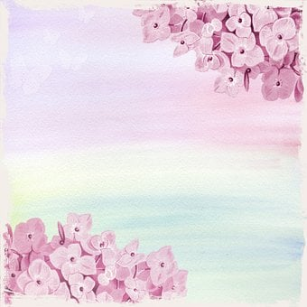Background, Template, Scrapbooking, Pink, Soft, Love