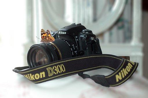 Camera, Nikon, D300, Butterfly, Macro, Photography