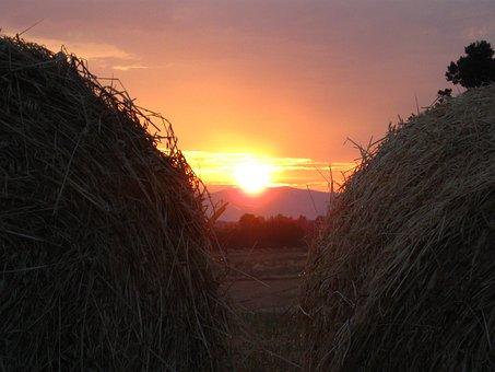 Sunset, Water Drop, Hay, Landscape, Maremma, Tuscany