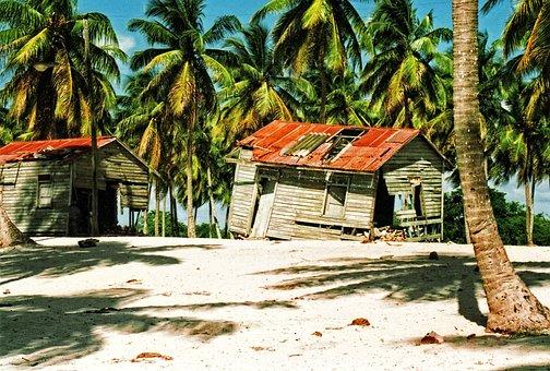 Dominican, Republic, Beautiful, Beach, Palm Trees