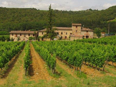 Chianti Mountains, Tuscany, Wine, Landscape, Vineyard