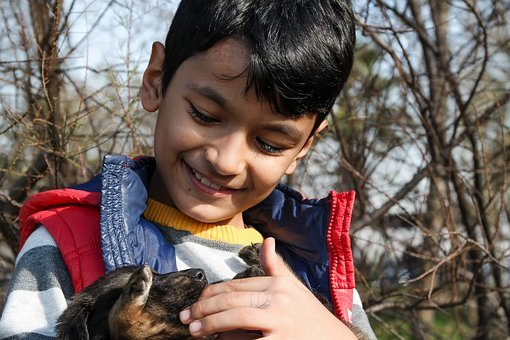 Boy And Dog, Dog, Puppies, Puppy, Baby Animal, Animal