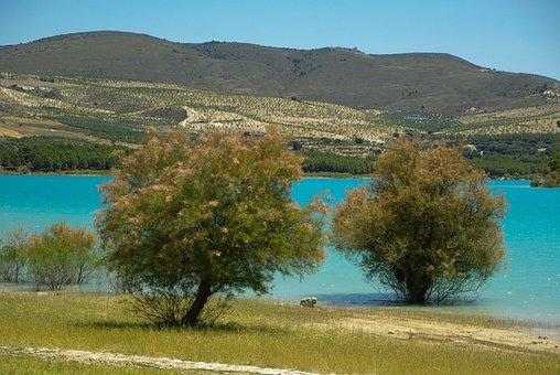 Andalusia, Los Bermejales Lake, Arenas Del Rey