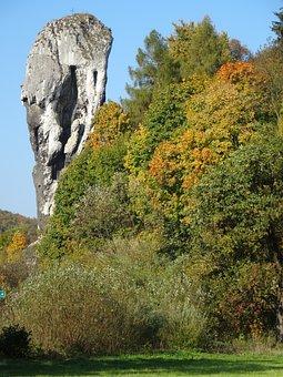 Rock Club Hercules, Landscape, Nature, Tree