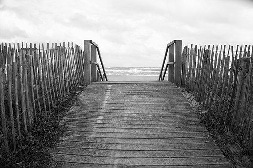 Wood, Beach, Sea, Sand, Palisade, Closing, Wooden Fence