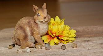 Hare, Dekohase, Flower, Fabric Flower, Yellow, Stones