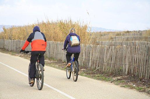 Cyclist, Bike, Person, Promenade, Landscape, Road