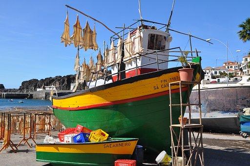 Madiera, Spain, Fishing, Boat, Fish, Sea, Fisherman