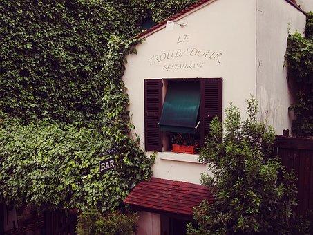 Le Troubadour, Restaurant, France, Vines, Leaves