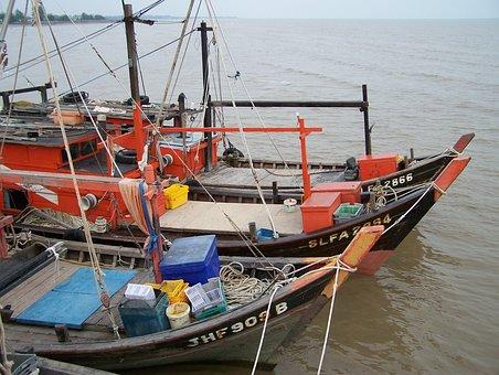 Boats, Chinese Boats, Chinese, Docked, Fishing Boats