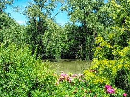 Chicago Botanical Garden, Flowers, Plants, Pond, Lake