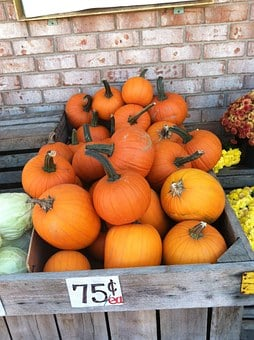 Pumpkins, Fall, Autumn, Orange, Halloween, Food