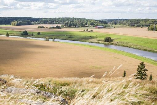 Landscape, Field, Countryside, Finnish, Summer, Nature