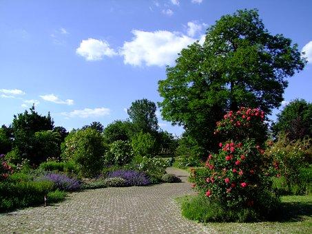 Botanical Garden, Düsseldorf, Garden, Spring, Rosenbaum