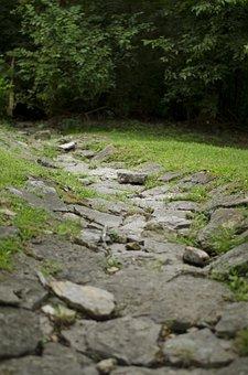 Stone Path, Nature, Stone, Path, Green, Natural