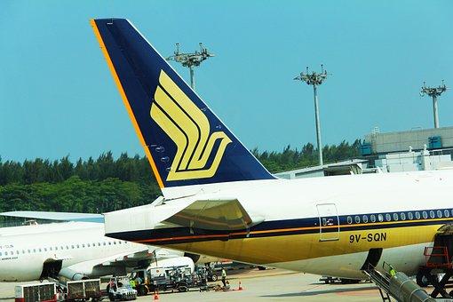 Sq, Sia, Airline, Logo, Wing, Flight, Plane