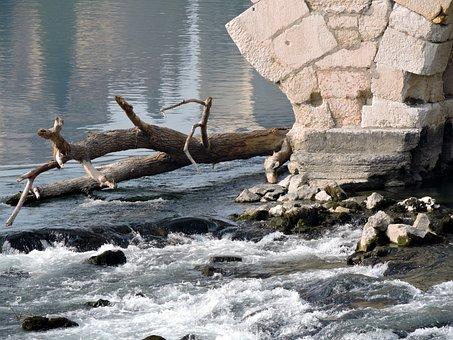 Water, River, Branch, Stone, Adige, Verona
