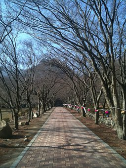 Perimeter Road, Trails, Republic Of Korea