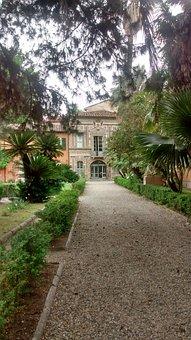 Pisa, Orto Botanico, Garden, Tuscany, Green, Nature