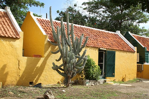Cactus, Curasao, Building, Yellow, Architecture