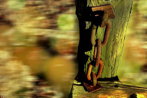 Chain, Log, Stainless, Weathered, Rusted, Broken, Decay