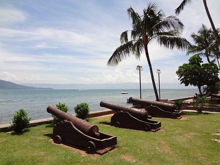 Cannon, Palm Tree, Mar, Ilhabela