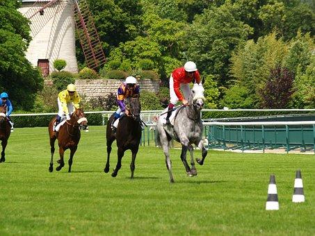 Race, Horses, Vincennes, Paris, Horseback Riding