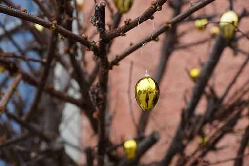 Egg, Gold, Easter, Road, Tree, Bush, Spring, Gloss