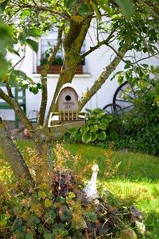 Bird Feeder, Tree, Feeding, Einflugloch, Nature, Depend