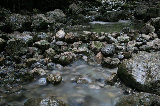 River, Creek, Bach, Nature, Water, Waters, Forest, Flow