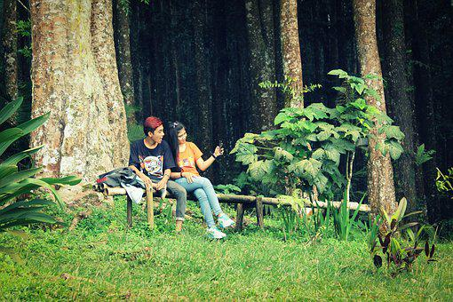 Woods, Trees, Couple, Woman, Man, Nature, Forest