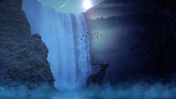 Hirsch, Wild, Sun, Moon, Star, Waterfall, Water, Tree