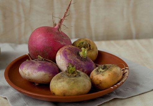 Turnip, Radish, Plate, Autumn