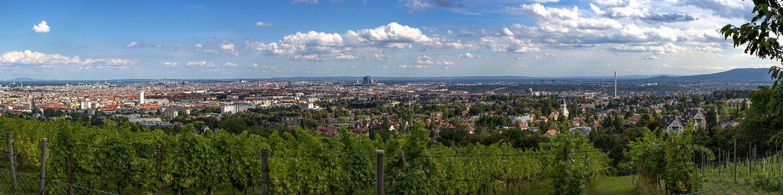 Vienna, Panorama, Vineyard, Austria, City, Good View