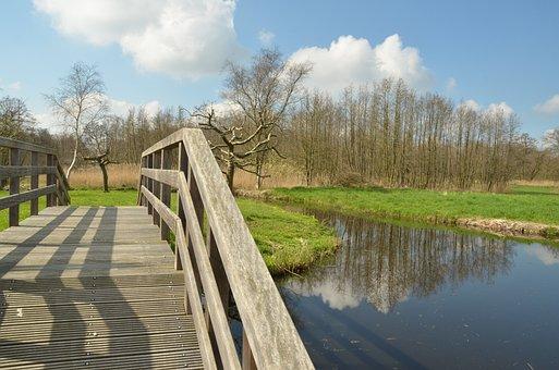 Netherlands, Nature, Landscape, Ankeveen, Water, Grass