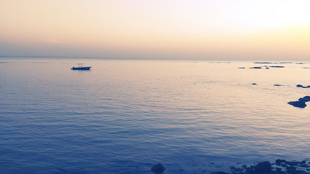 Atlantic Ocean, Saly, Senegal, Sailfish, Ocean, Sea