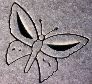 Carving, Butterfly, Animal, Headstone, Symbol, Detail