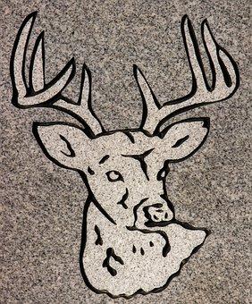 Carving, Animal, Headstone, Symbol, Detail, Granite