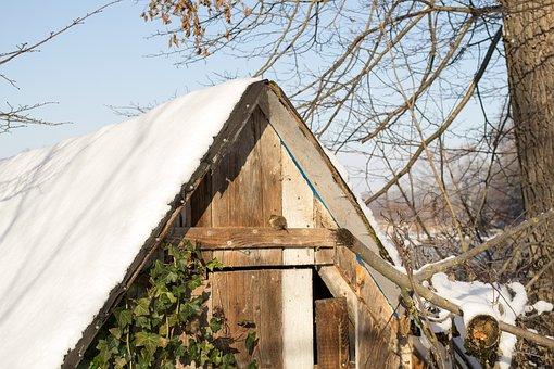 Hut, Bird, Log Cabin, Animal, Winter, Sweet, Snow