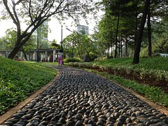 Stone, Path, Track, Footpath, Park, Walking, Pathway
