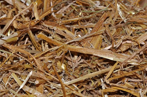 Straw, Animal Bedding, Natural Material, Close Up