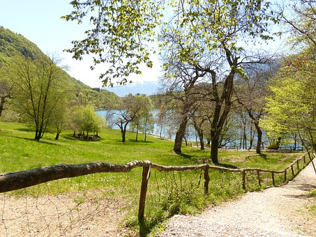 Away, Path, Trail, Idyll, Tenno Lake, Lake, Waters