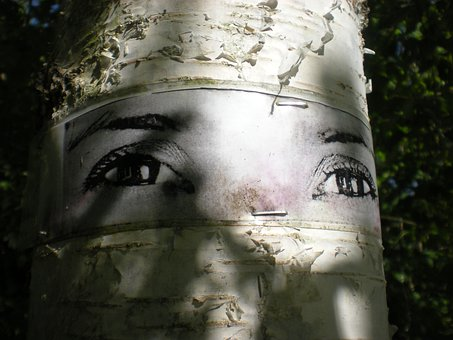 Birch, Eyes, Natural Art, Tanto, Södermalm, Stockholm