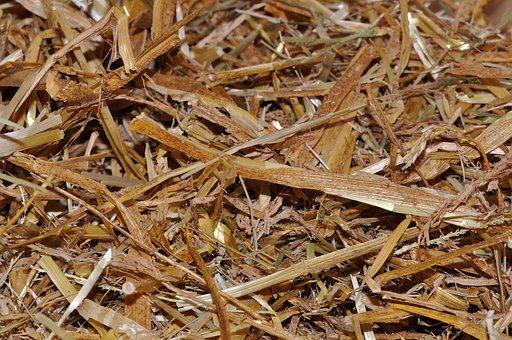 Straw, Animal Bedding, Natural Material, Close, Texture