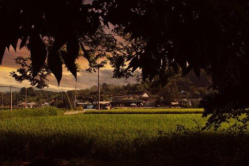 Glow, Country, Landscape, Autumn, Rural Landscape