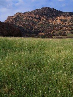 Landscape, Chatsworth, California, Park, Grass, Rocks